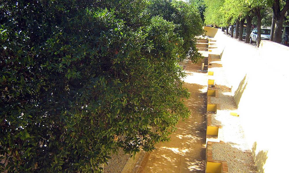 Requalificação do Jardim das Laranjeiras - Elvas